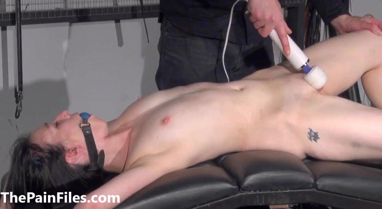 Gay porn star biggest dick